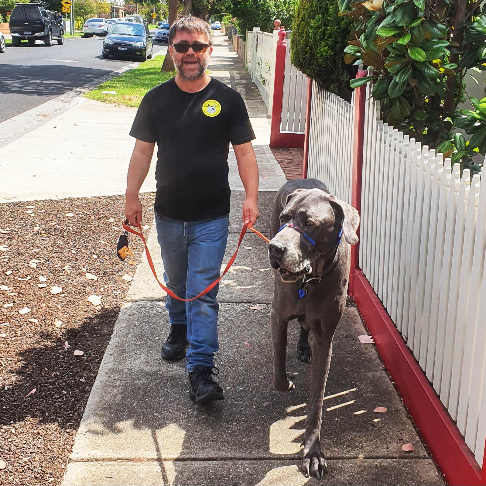 the-pet-nanny-dog-walking-service-melbourne-5