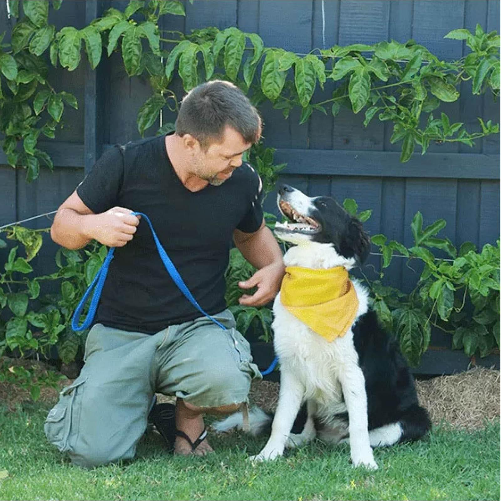 the-pet-nanny-dog-walking-service-melbourne-8